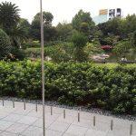 IMG_3944 (002)